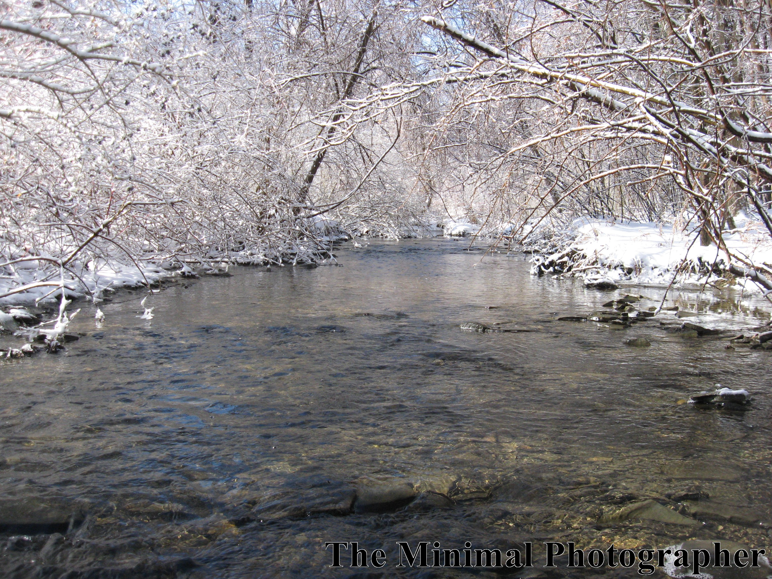 Picture of Stream in Winter