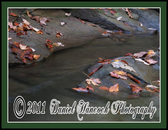 Photo of Stream in Fall