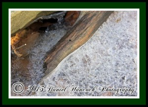 Photograph of Ice
